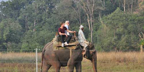 Wildlife Safari in Jim Corbett National Park (Corbett Tiger Reserve), Online Booking & Reservation, jimcorbettnationalparkonline.com